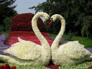 красивые-сады-и-ландшафтный-дизайн-2